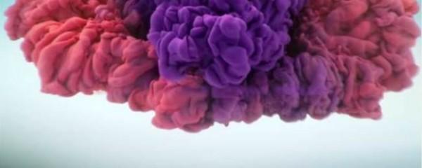 """Artistas criam """"explosão de cores"""""""