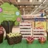 Crianças vão receber fruta grátis no Continente