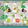 CTT voltam a homenagear frutas portuguesas
