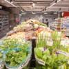 My Auchan abre segunda loja em Lisboa