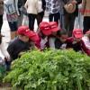 Reportagem: Missão Continente quer um Portugal mais saudável