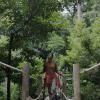 Luso com Gás mostra a riqueza natural da Serra do Bussaco
