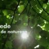 Estreia online: I'M a Brand Água de Luso – Sede de natureza