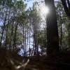 Reportagem: Descobrir o Centro através da natureza!