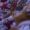 Emissão online: Marcas que nos inspiram neste Natal!