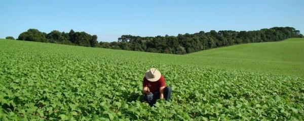 Crédito Agrícola vai apoiar agricultores